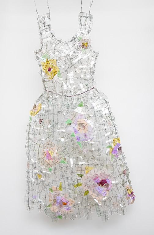 Erysimum / Wallflower / Fleurs des champs